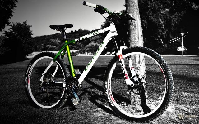 Велосипед к чему снится